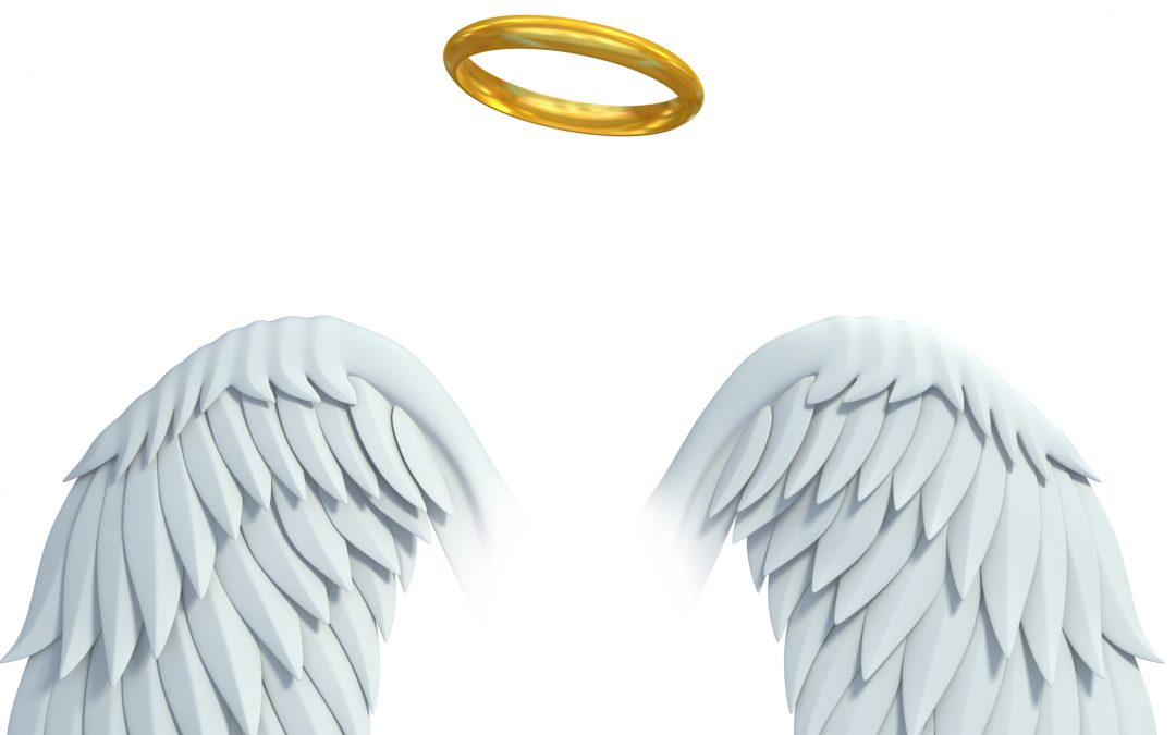 Angel wings with halo
